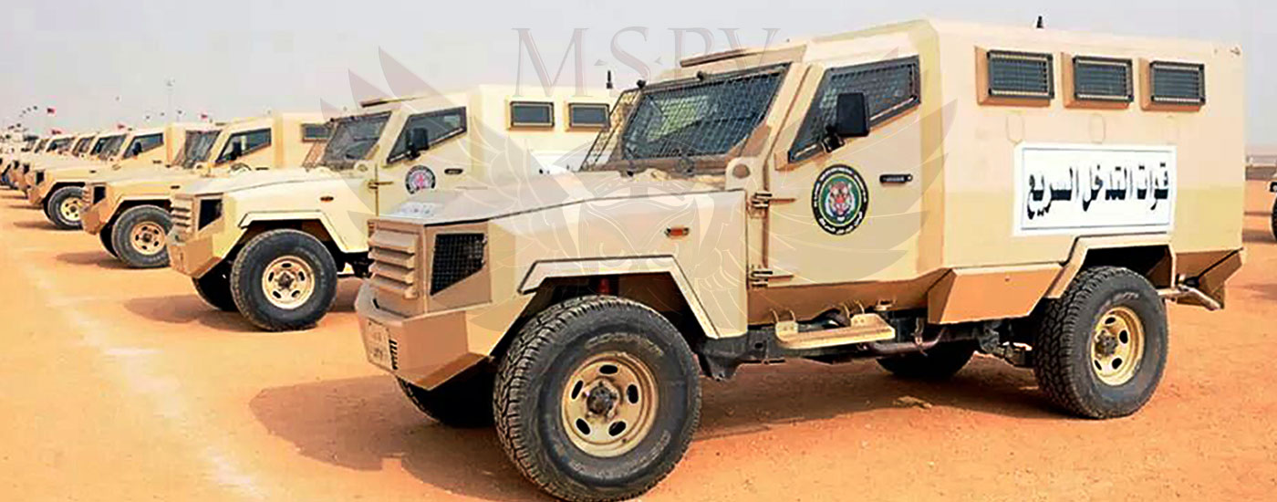 Armoured Personnel Carrier Niger